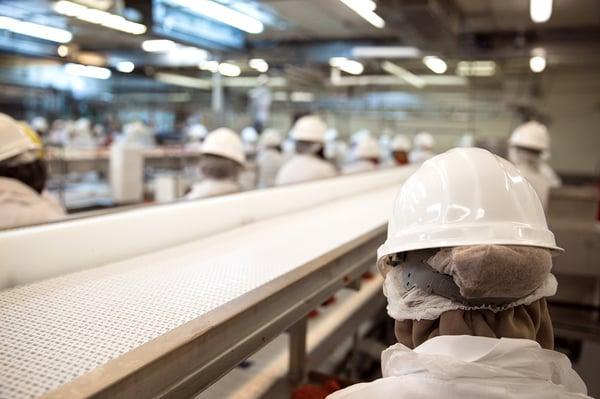 factory covid